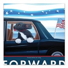 "Forward with Bo, the 1st Square Car Magnet 3"" x 3"""