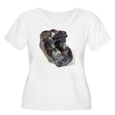 Fragment of a T-Shirt