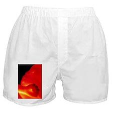 p6800865 Boxer Shorts