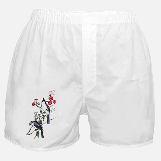 bct_iTouch4_Generic_Case Boxer Shorts