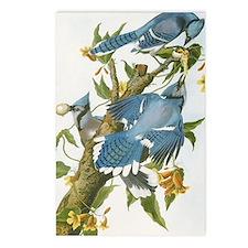 bja_iPad 3 Folio Postcards (Package of 8)