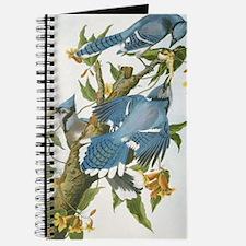 bja_iPad 3 Folio Journal