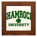 Shamrock University Framed Tile