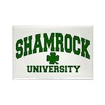 Shamrock University Rectangle Magnet