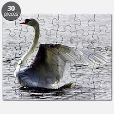 Swan Calendar January Puzzle