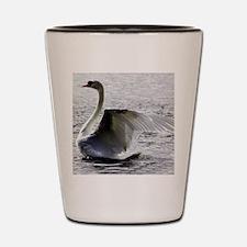 Swan Calendar January Shot Glass
