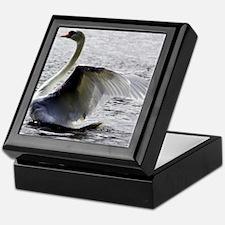 Swan Calendar January Keepsake Box