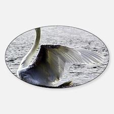 Swan Calendar January Decal