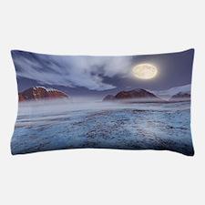 Full Moon in winter Pillow Case