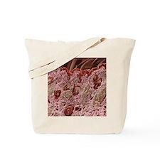 Hair follicles, SEM Tote Bag