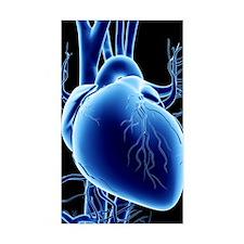 Heart Decal