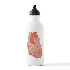 Heart, artwork Water Bottle