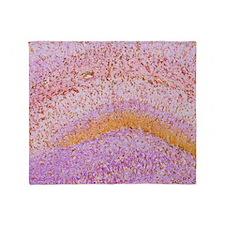 Hippocampus brain tissue Throw Blanket