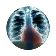 Healthy heart and lungs, X-ray Round Ornament