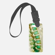 Healthy lower spine, X-ray Luggage Tag