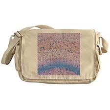Hippocampus brain tissue Messenger Bag