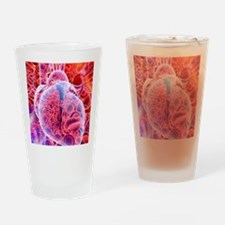 Heart and red blood cells, artwork Drinking Glass