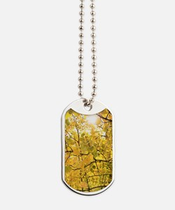 Golden Glow Dog Tags