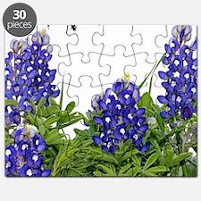 Texas Bluebonnets Puzzle