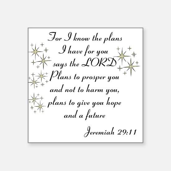 Jeremiah 29 Sticker
