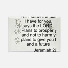Jeremiah 29 Magnets