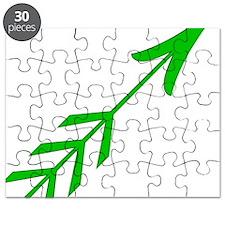 Green Arrow4 Puzzle