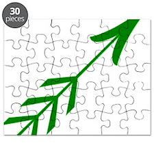 Green Arrow5 Puzzle