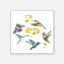 "HUMMINGBIRDS AND TRUMPET PL Square Sticker 3"" x 3"""