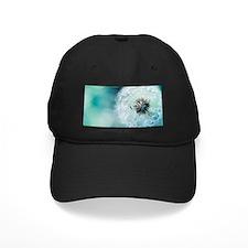 dandelion blooming Baseball Hat