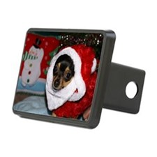 AbbeyXMasCard2 Hitch Cover