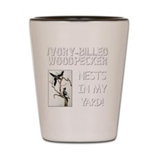 Ivory-billed Woodpecker Nests In My Yar Shot Glass