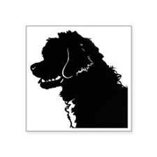 "Portuguese Water Dog Head Square Sticker 3"" x 3"""