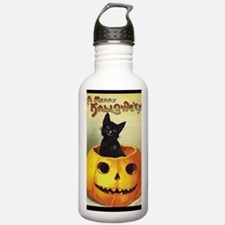 BlackKittenPumpkinGree Water Bottle