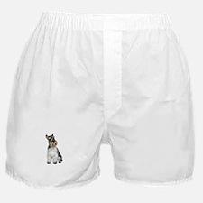Schnauzer (11C) Boxer Shorts