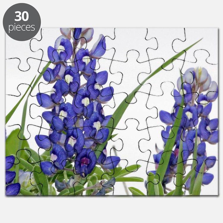 Texas bluebonnet circle charm Puzzle