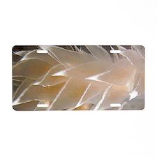 nudiwhitekey hanger Aluminum License Plate
