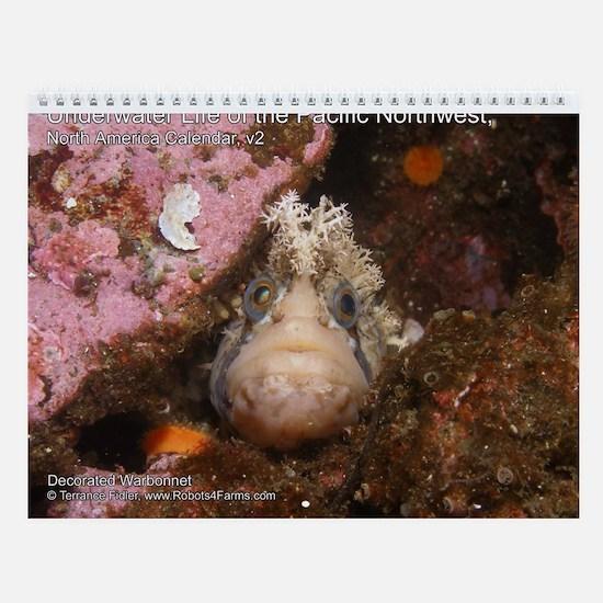 North Pacific Ocean Life Wall 2013 Calendar v2