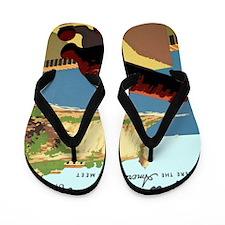 Discover Puerto Rico Flip Flops