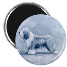 Bearded Collie Magnet