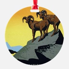 National Parks: Preserve Wild Life Round Ornament