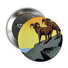 "National Parks: Preserve Wild Life 2.25"" Button"
