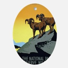 National Parks: Preserve Wild Life Oval Ornament
