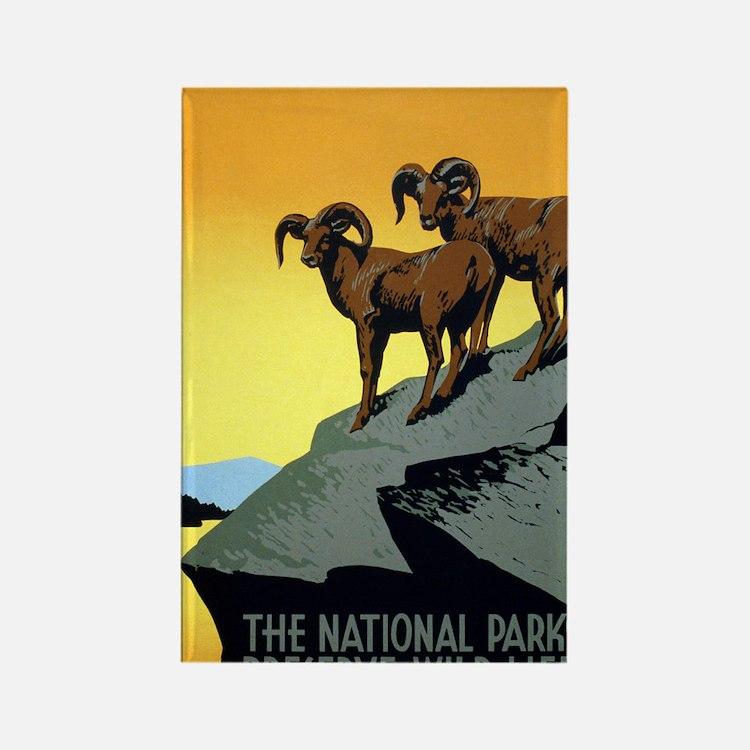 National Parks: Preserve Wild Lif Rectangle Magnet
