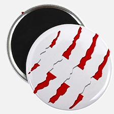 Dive Flag Scratches Magnet