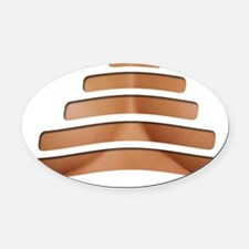 Ripped Cleavage Oval Car Magnet