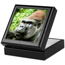 Earnie Silverback gorilla looking for Keepsake Box