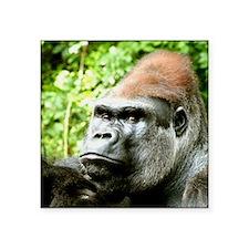 """Earnie Silverback gorilla l Square Sticker 3"""" x 3"""""""