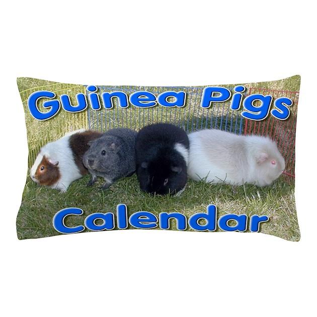 guinea pigs 1 wall calendar pillow case by admin cp72069