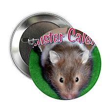 "Hamster Wall Calendar 2.25"" Button"