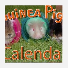Guinea Pigs #2 Wall Calendar Tile Coaster